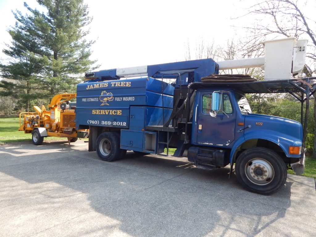 Professional tree services in Delaware, Ohio by James Tree Service